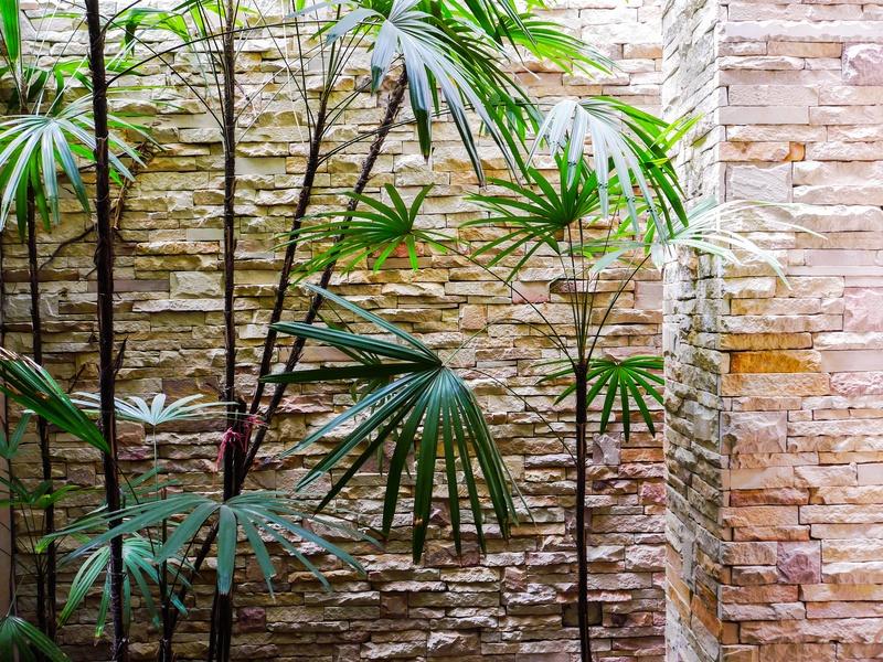Paisajismo en barcelona dise o de jardines for Jardines 300 metros cuadrados